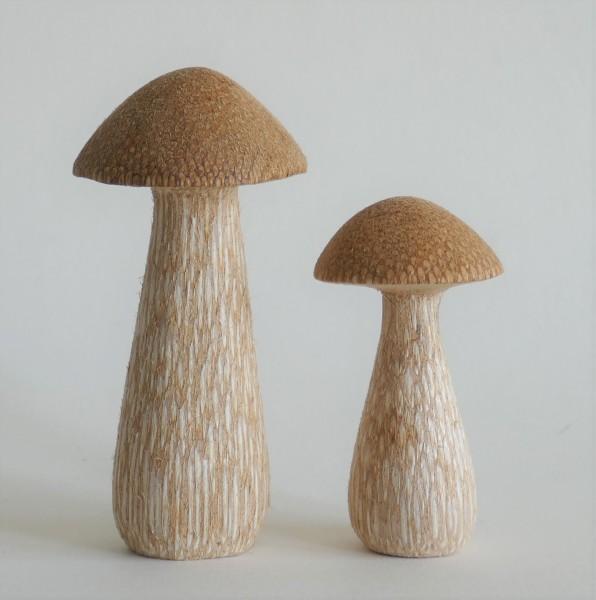 Pilze-rehbraun